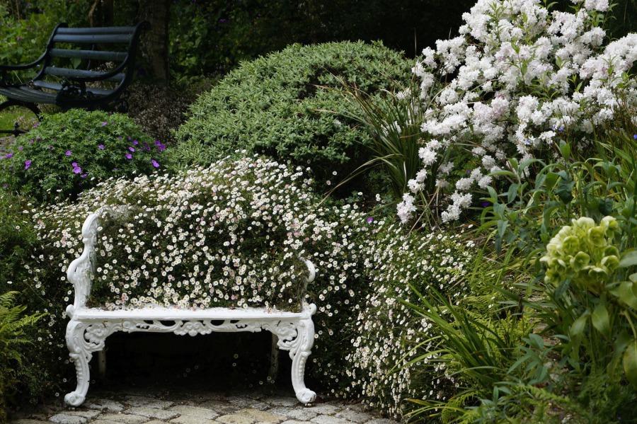 Weißer Garten schönthaler wassergärten weißer garten